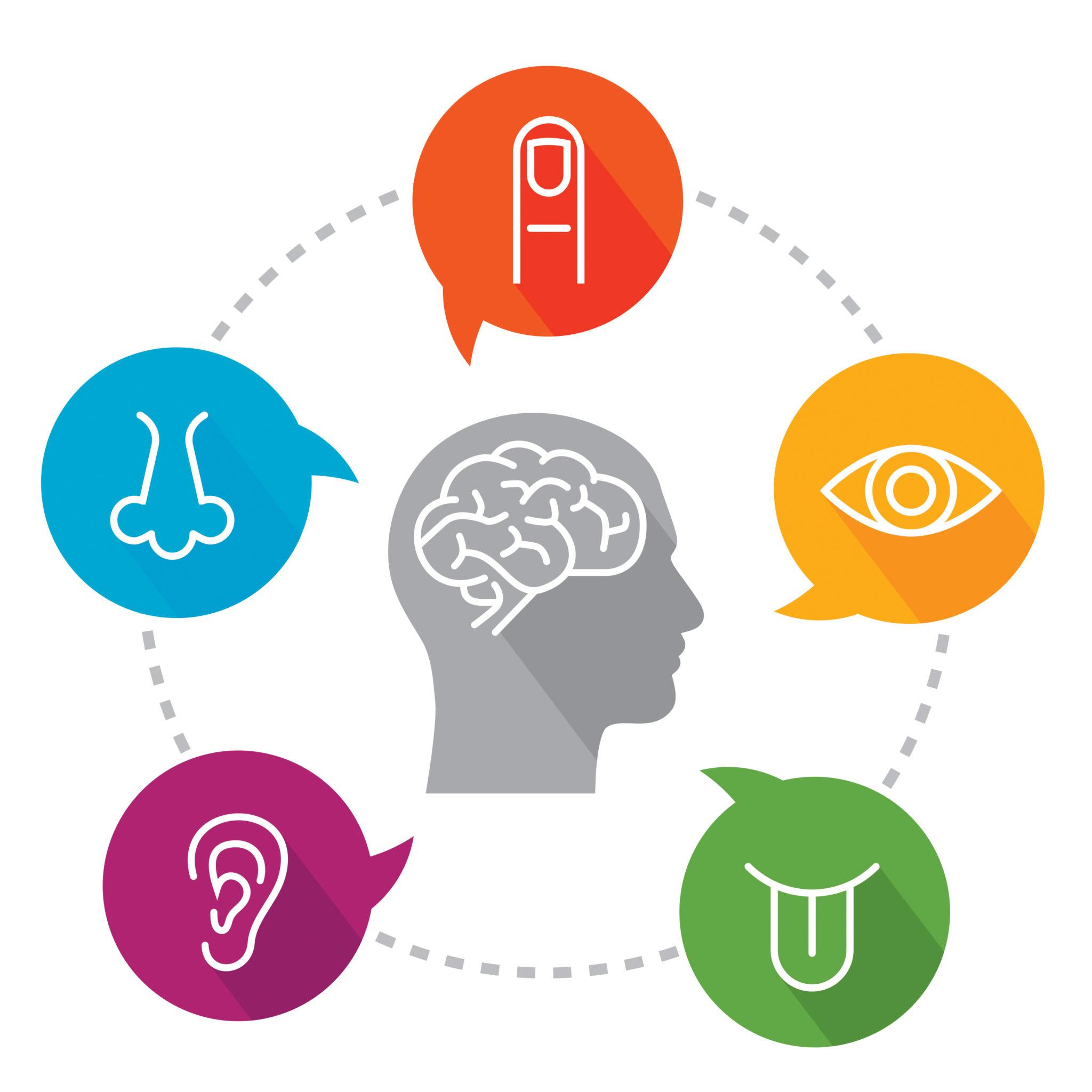 idea cellular consumer behaviour